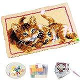 Lishiguli Embroidery kit Latch Hook Kit. DIY. Werkzeuge Häkeln Kissen Teppiche Latch Haken Komplette Kissenbezug Kit Kissen Stickerei für Kinder, Orange, 52 * 38 cm / 20 * 15 in