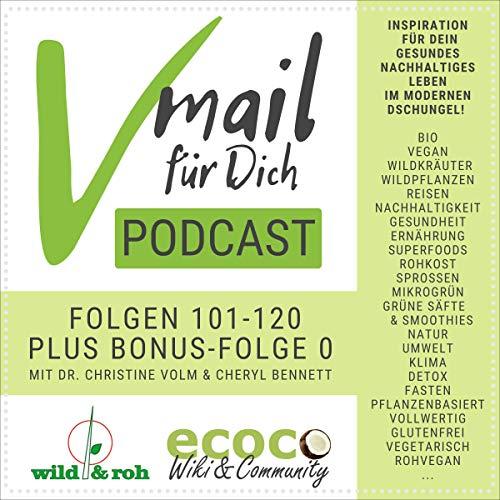 Vmail Für Dich Podcast - Serie 6 Titelbild