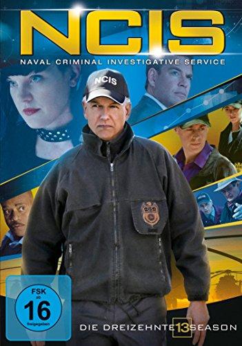 Season 13 (6 DVDs)