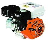 LG Motore A Scoppio 6,5cv 196cc Motozappa Kart Pompa Quad Biotrituratore Generatore