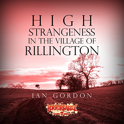 Couverture de High Strangeness in the Village of Rillington