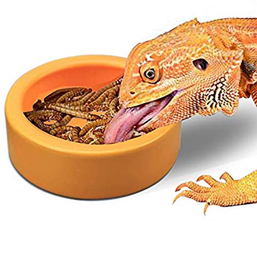 TDPET Ceramic Mini Reptile Worm Dish - Lizard Escape Proof Feeding Bowl Circular (S, Orange)