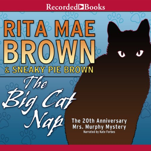 The Big Cat Nap audiobook cover art