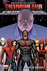 SHADOWLAND - LA CHUTE DE DAREDEVIL de DIGGLE+JOHNSTON+TAN+