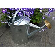 Traditional Watering Galvanised Brass Gallon