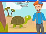 The Tortoise Song by Blippi - Animals for Children