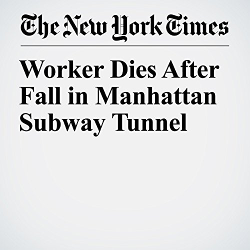 『Worker Dies After Fall in Manhattan Subway Tunnel』のカバーアート