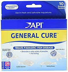 Goldfish Disease Medications For Common Ailments