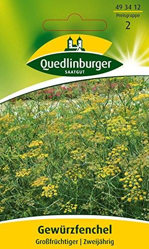Fenchel, Gewürzfenchel, Foeniculum vulgare, Samen für ca. 3 lfm.