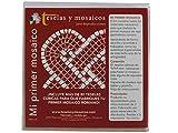 TESELAS Y MOSAICOS Y JANO REPRODUCCIONES Mi Primer Mosaico. Flor Rosa y Morada.