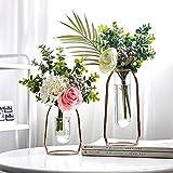 Jarrones de hierro con marco de arte, jarrones decorativos modernos, florero de vidrio Marco de madera hidropónico Forma ovalada para la decoración de la boda de la cafetería (2 piezas) (Rose Gold)