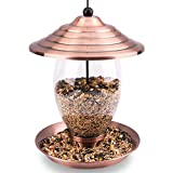 Birdream Metal Bird Feeder Outdoor Hanging Bird Feeders for Outside with Copper Brush Finish Glass Container Holds 3lb Seed Large Capacity Waterproof Decoration for Garden Yard Tree