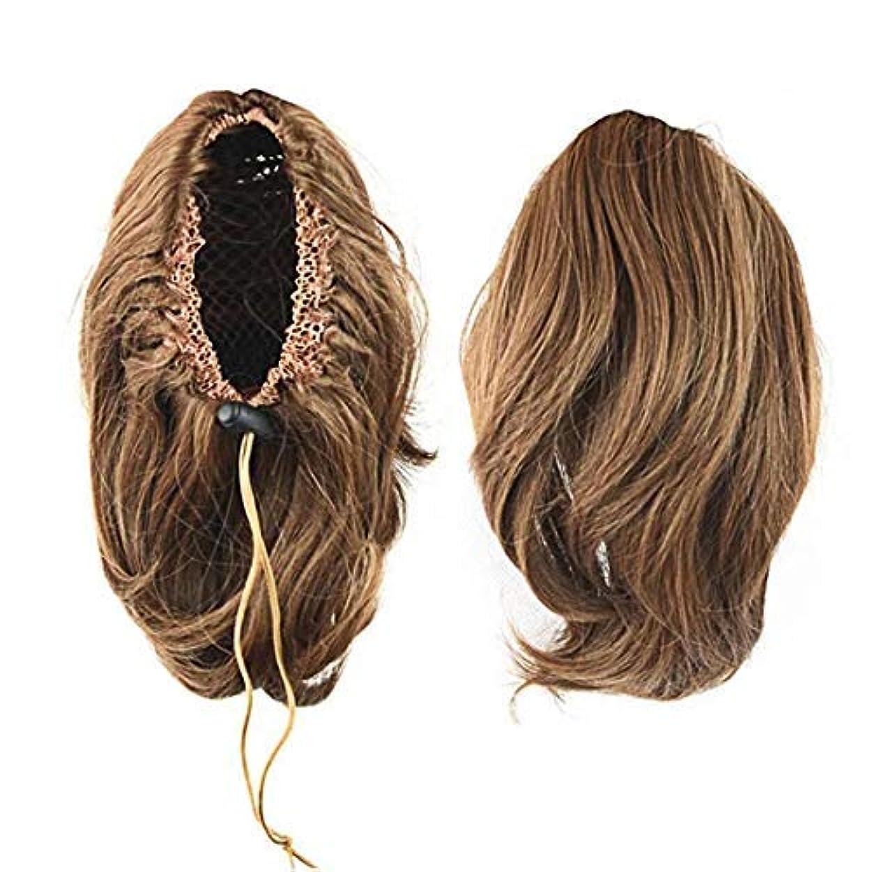 音楽を聴く苦しめる資源CEXIN(セシン) 自然 ポニーテール ウィッグ クリップ ゴム式 盛りウィッグ 2タイプ エクステ ショート カール ミディアム 部分かつら ボリューム ポイントウィッグ つけ毛