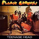 Songtexte von Flamin' Groovies - Teenage Head