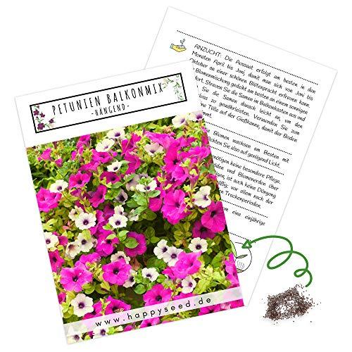 Blumensamen Balkonkasten Mischung - Farbenfrohe Blumen mit langer Blütezeit ideal für Ihren Balkon, Garten & Blumenwiese (Petunien Mix)
