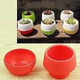 N\A Hefeizanen Plant Mini Flower Pot ColourfulRound Jardin Plastique Intérieur Décoration Nursery...