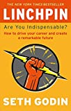 Linchpin - Are You Indispensable? How to drive your career and create a remarkable future