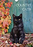 COUNTRY CATS (Wandkalender 2021 DIN A4 hoch)