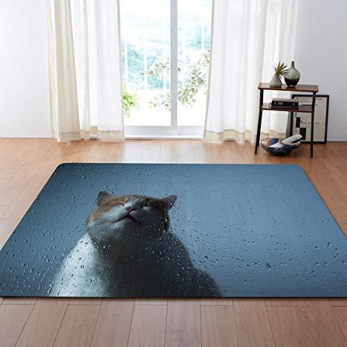 Grote tapijten voor woonkamer, eetkamer, slaapkamer, antislip, binnenvloermatten, tapijten, wooncultuur, mooie dieren, snoepjes, moderne print 160 × 120 cm