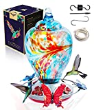 Hummingbird Feeders for Outdoors, Humming Bird Feeder with Perch, Hand Blown Glass Hummingbird Nectar Container with Accessories