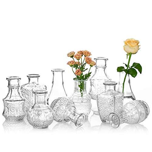 Glasseam Vaso di Vetro per Fiori Set di 10 Vasi di Gemme Vintage Trasparenti Dolce Mini Pisello per Centrotavola Decorazioni per Interni