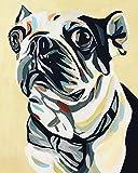 mlpnko DIY Pintar por números Boston Terrier Pintar por Numeros para Adultos Niños Pintura por Números con Pinceles y Pinturas, DIY Conjunto Completo