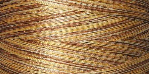 Superior Threads Rainbows #40 Embellishment Thread 500 Yards Spool; 829 All Spice 110-01-829