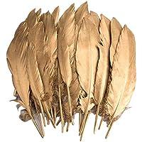 Plumas de Ganso, 40 pcs Oro Natural Plumas de Gallo Manualidades Decoración para Disfraces Hats, Hogar Bricolaje, Ropa Casa Fiesta (accesorio de disfraz) (Feathers J)