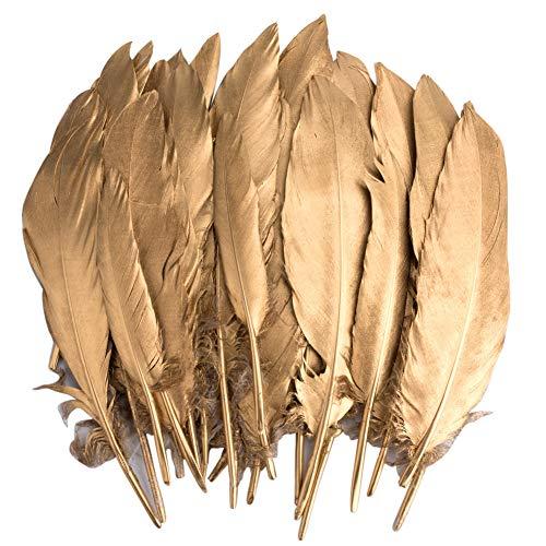 Vidillo Bunte Federn, 40 Stück Gold Gänsefedern, ideal als Dekoration zum Karnival für Halloween Fest Masken, Kostüme und Basteln für Kinder, Sicher und Ungiftig und Nicht verblassen (Feathers J)