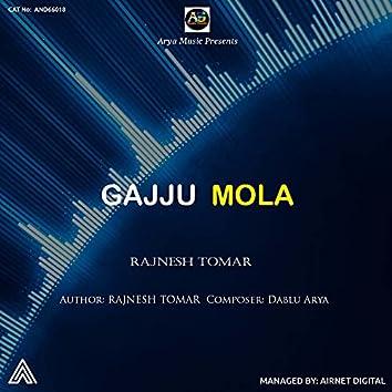 Gajju Mola