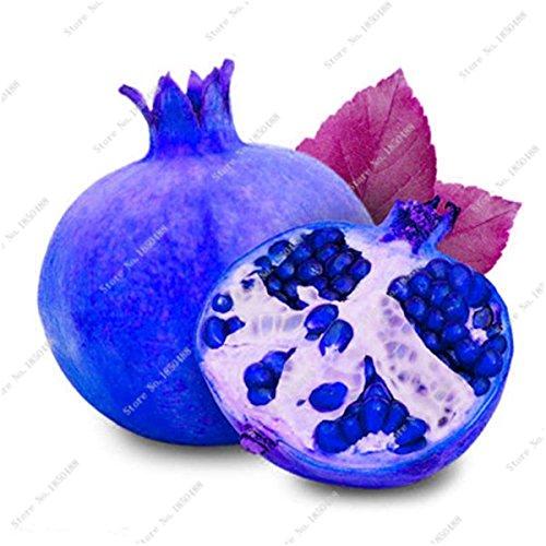 Grenade rare géant Graine Japon Bonsai savoureux fruits bio Heirloom non Ogm Multi Color Fruit Graine Arbre à feuilles persistantes 30 Pcs/Lot 9