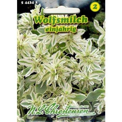 Wolfsmilch (Portion)