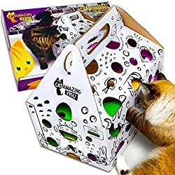Cat amazing epic cat puzzle feeder and treat hunt maze