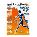 InvigoFlex® GS - Glucosamine Sulfate...