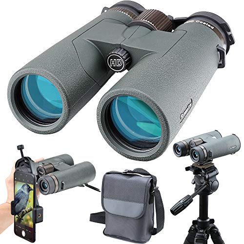 ANQILAFU 10x42双眼鏡 HD望遠鏡 - スマートフォンカメラホルダーが付属しています - 耐久性と透明性のあるBAK4プリズムを備えた防水双 眼鏡 - バードウォッチング野生生物狩猟キャンプハイキング