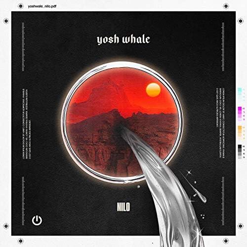 Yosh Whale