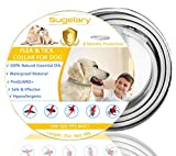 Collare Antipulci Cane Impermeabile, Collari Antiparassitario per Cani Aaturale e Sicura Regolabile, 8 Mesi di Protezione per Contro Parassiti e Insetti Protezione Stagione Completa(63 cm) (1)