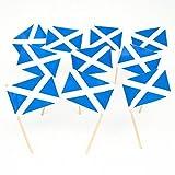 Scotland | Scottish St Andrews Cross Flag Toothpicks (100) by Flags! Georgia