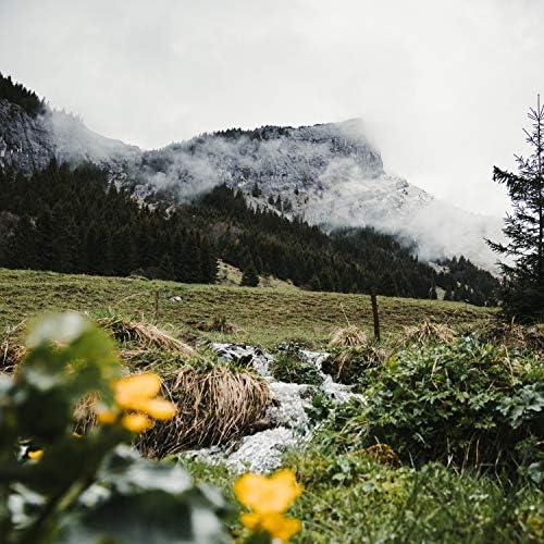 Masajes Spa, Relajación Meditar Academie & Sonidos de la Naturaleza Relajacion
