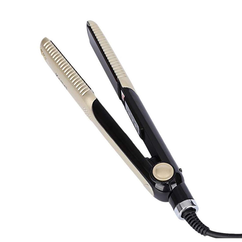 ナイトスポット建築気難しいストレートヘアアイロン、ヘアスティック、ヘアスタイリング、温度制御、ヘアスタイリング、ヘアスタイリング モデリングツール (色 : ゴールド)
