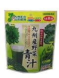 九州産野菜 青汁 42g