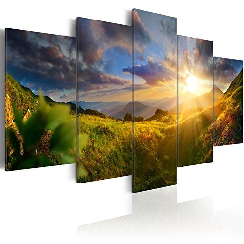 murando - Bilder Landschaft Natur 200x100 cm Vlies Leinwandbild 5 TLG Kunstdruck modern Wandbilder XXL Wanddekoration Design Wand Bild - Gebirge Wiese c-C-0058-b-m