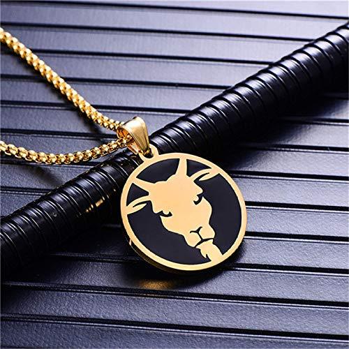 Collar De Constelaciones,Capricornio 12 Constelaciones Collar De Moda