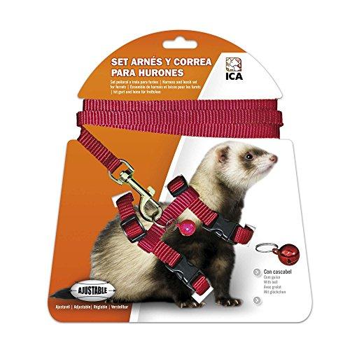 ICA Kit Harnais et Sangle pour Furets (DA970) Rouge