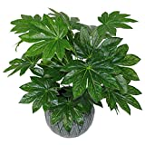 Pianta artificiale giapponese Aralia Evergreen, vaso in plastica, 60 cm, colore: nero