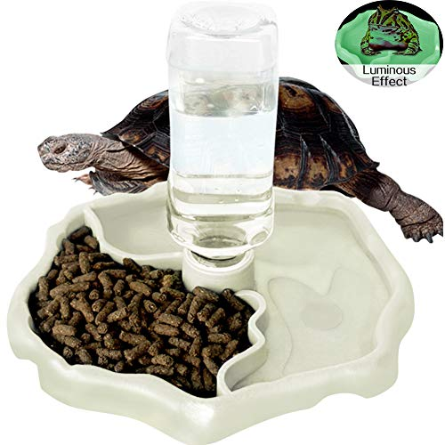 WINGOFFLY Automatic Reptile Feeders Waterer Automatic-refilling Turtle Water Dispenser Bottle Tortoise Food Water Bowl Feeding Dish for Lizards Luminous
