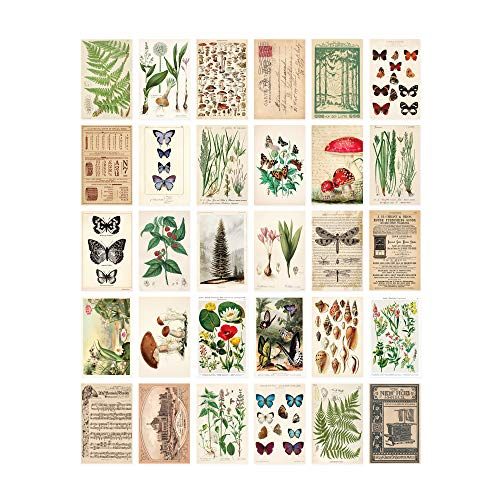 Vintage Collection Postcard Set: Pack of 30 Retro Style Botanical, Nature and Ephemera Postcards by Wintertime Crafts