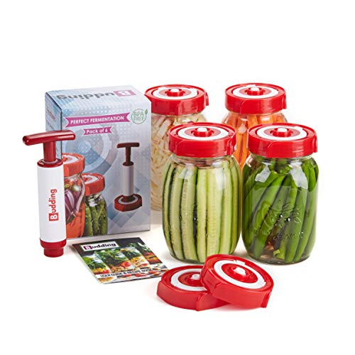 Fermentation Lids for Wide Mouth Mason Jars, 6 Lids, Reusable DIY Fermenting Accessories with Oxygen Pump and Waterless Airlock, Automatic Venting & Guide Book