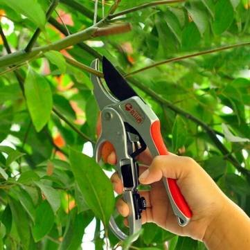 30mm de section jardinage élagage cisailles ciseaux branche coupée trimmer