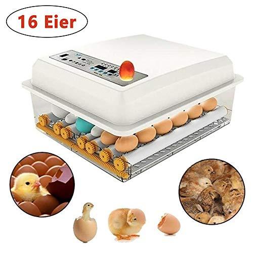Dyna-Living Brutmaschine Vollautomatisch, Inkubator Hühner Brutautomat Wärmeplatte Küken Brutapparat für Hühner Wachteleier Vögel Ente Gänse Pfau - 16 Eier